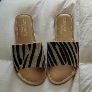 Zebra print slides